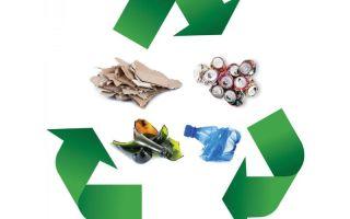 Что такое рециклинг отходов и зачем он нужен