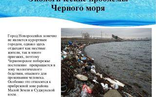 Экологические проблемы черного моря и его берегов кратко