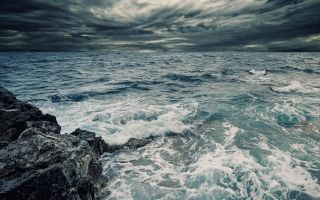 Условия в океане и развитие морских льдов