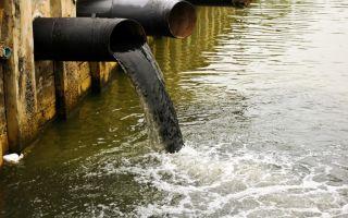 Загрязнение рек воды отходами – источники, причины и последствия