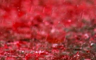 Кровавый дождь в локарно и монеты, падающие с неба