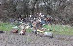 Как бороться с несанкционированными (незаконными) свалками мусора