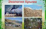 Экология крыма | экологические проблемы крыма и пути их решения