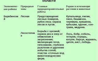 Экологические проблемы новосибирска и новосибирской области