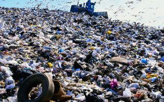 Экологические проблемы бытовых и промышленных отходов города