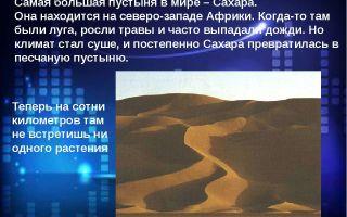 Пустыня сахара – животные, растения, факты, климат и карта пустыни сахара