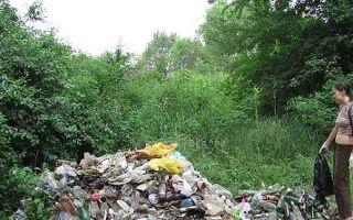 Экология краснодарского края – угрозы и возможности