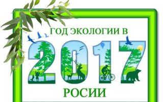 2017 год в россии посвящается решению экологическим проблемам