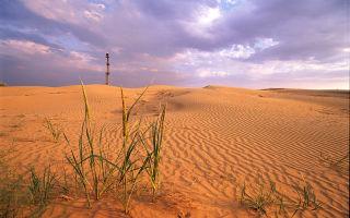 Пустыни и полупустыни россии | климат в зоне пустынь и полупустынь