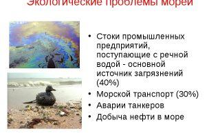 Экологические проблемы белого моря кратко