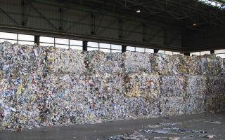 Переработка отходов бумаги и картона – эффективное использование макулатуры