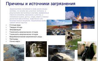Загрязнение водоемов – источники и причины | охрана и защита от загрязнения