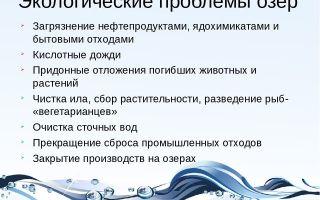 Экологические проблемы озер россии и мира. экология озер