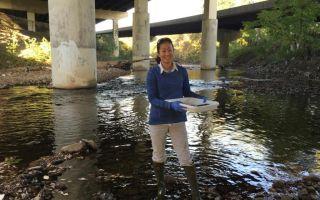 Подземные воды в балтиморе содержат большое количество амфетамина