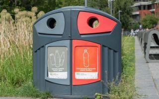 Все про раздельный сбор мусора в россии и за рубежом