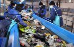 Все о переработке твердых бытовых отходов