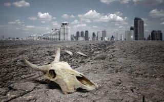 Экологические проблемы животных и животного мира – исчезновение и уничтожение